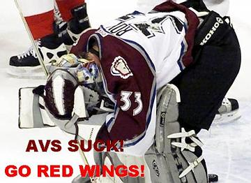 avssuckgoredwings.jpg